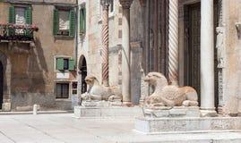 Cattedrale di Verona Fotografia Stock
