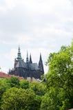Cattedrale di Vitus del san a Praga Fotografia Stock