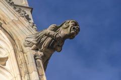 Cattedrale di York del doccione Fotografie Stock