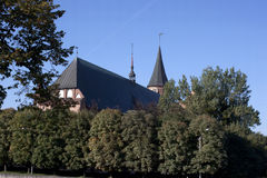 Cattedrale a Kaliningrad Fotografia Stock Libera da Diritti