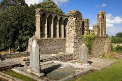 Cattedrale medioevale ferns co Wexford l'irlanda fotografia stock
