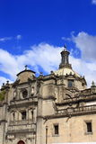 Cattedrale metropolitana Fotografia Stock