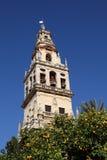 Cattedrale-Moschea a Cordova Immagine Stock Libera da Diritti