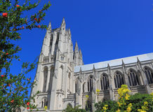 Cattedrale nazionale Washington in primavera Immagini Stock Libere da Diritti