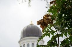 Cattedrale a Odessa Fotografia Stock