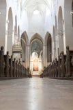 Cattedrale principale della Finlandia Immagine Stock Libera da Diritti