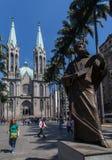 Cattedrale Sao Paulo Brasile dell'esperto in informatica Immagini Stock Libere da Diritti