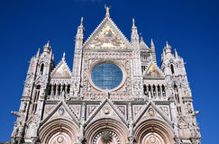 Cattedrale a Siena, Italia Fotografia Stock Libera da Diritti