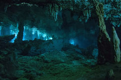 Cattedrale subacquea immagini stock