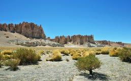 Cattedrali della roccia in Salar de Tara Immagini Stock