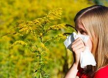 Cattiva allergia al polline Immagini Stock Libere da Diritti