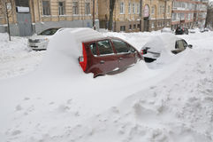 Cattività della neve Immagini Stock Libere da Diritti