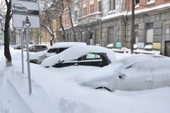 Cattività della neve Immagini Stock