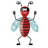 Cattivo insetto Immagini Stock
