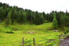 Cattle area in Dolomiti mountains Stock Photo