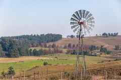 Cattle Farming Windmills Landscape Stock Images