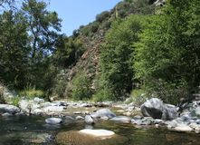 Cattle Canyon Stream 2. Stream in Cattle Canyon, San Gabriel Mountains, California Royalty Free Stock Images