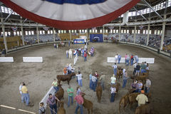 Cattle contest at Iowa State Fair Stock Photography