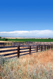 Cattle Corrals In Summer Royalty Free Stock Photo