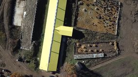 Cow farm and barn, shooting helicopter. Cattle Cows Farm. The shot travels above a cattle farm. The herded cows roam about inside a large fenced in area stock footage