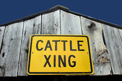 Cattle crossing sign Royalty Free Stock Images