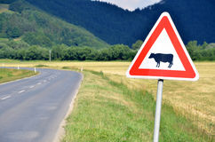 Cattle crossing traffic sign next to the empty road, close-up Royalty Free Stock Images