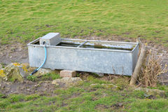 Cattle drinking trough. A photo of a cattle drinking trough in a field Stock Image