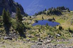 Cattle drive around a small mountain lake. In Chamrousse range Stock Photo