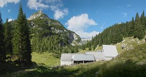 Cattle farm in Planina Duplje near Krnsko jezero lake in Julian Alps. In Slovenia Royalty Free Stock Photo