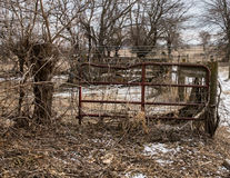 Cattle gate Stock Photos