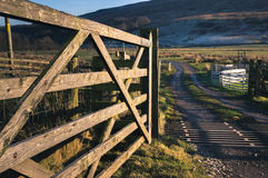 Cattle grid in Cumbria Royalty Free Stock Photography