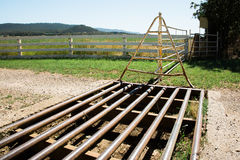 Cattle Grid Stock Photos