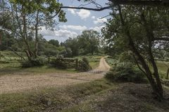 Cattle Grid and Gate New Forest Hampshire UK. The New Forest is an area of southern England which includes one of the largest remaining tracts of unenclosed royalty free stock image
