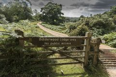 Cattle Grid and Gate New Forest Hampshire UK. The New Forest is an area of southern England which includes one of the largest remaining tracts of unenclosed royalty free stock photo
