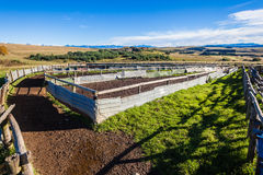 Cattle Herd Pens Corral Farm. Cattle pens corral for sorting cattle to chemical wash for ticks parasites veterinary inoculations and branding the herds Royalty Free Stock Image