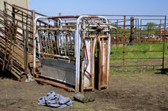 Cattle loading chute Royalty Free Stock Image