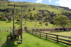 Cattle pen new zealand Royalty Free Stock Images