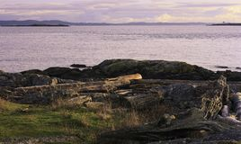 Cattle Point view of San Juan Island Royalty Free Stock Images
