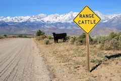 Cattle range sign on road Stock Photo