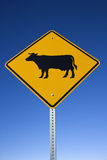 'Cattle on Road' Sign Stock Photos