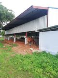 Cattle Shed royalty free stock photography