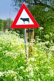 Cattle sign Stock Image