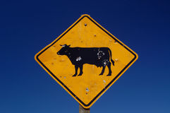 Cattle Sign Royalty Free Stock Images