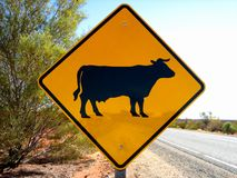 Cattle Sign on roadway Royalty Free Stock Images