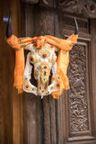 Cattle skeleton hangging on a wooden door at Shangrila, pray for Royalty Free Stock Photos