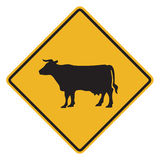 Cattle traffic warning Stock Photography