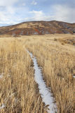 Cattle trail in a mountain valley Stock Photos