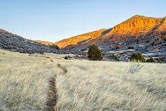 Cattle trail at Red Mountain Open Space. Fall scenery at sunset light Royalty Free Stock Photography