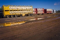 Cattle truck roadtrain. Cattle trucks waiting at Roma cattle sales yards to be filled. Queensland Australia Royalty Free Stock Photo
