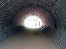Cattle Tunnel Stock Photo